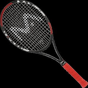 PRO295II_T-Racket_4