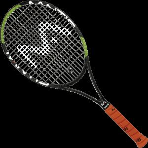PRO310II_T-Racket_4